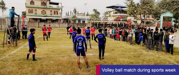 Volleyball Match (Sports Week)